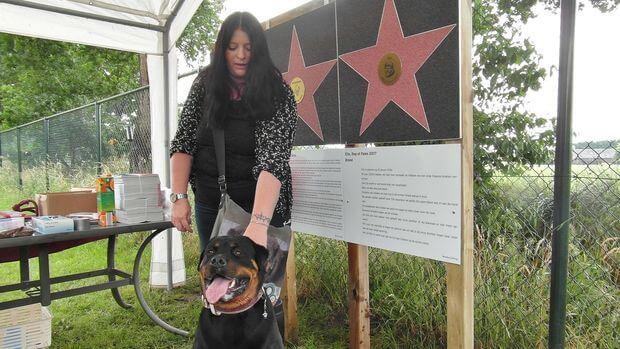 Elin, Dog of Fame 2017